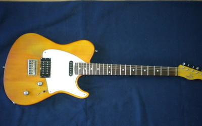 Sign Guitars T-Bone
