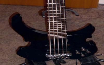 Warwick Rock Bass Vampire